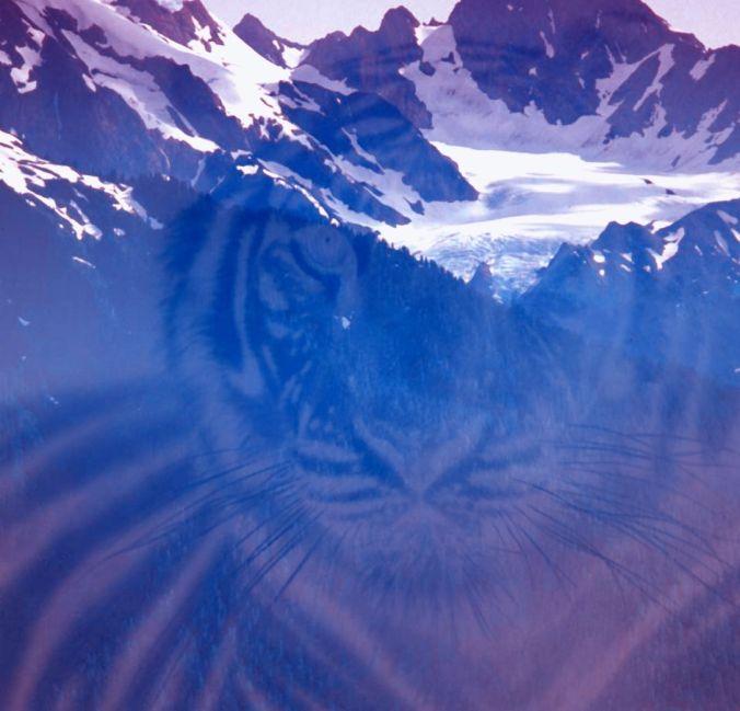 Tiger's Peak